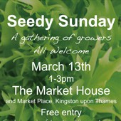 Seedy Sunday at Market House, Kingston