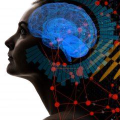 Easy Steps To Brain Health